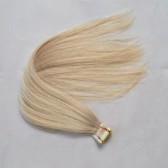 Tape In Hair Extensions Skin Weft Straight Color 61# 20pcs 40g/package
